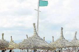 Der Wind, der Mallorca beherrscht