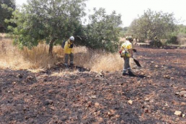 Bei Pòrtol vernichtete ein Feuer eine Plantage.