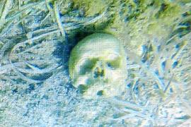 Totenschädel vor der Küste gefunden