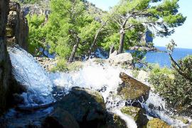 Mallorca hat großen Durst