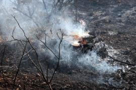 25 Hektar Land verbrannt