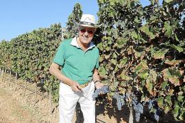 Beste Weinlese-Bedingungen auf Mallorca