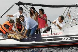 Mit einer Kindergruppe entlässt Mallorcas Umweltdezernent Vidal die genesene Schildkröte in die Freiheit.