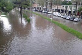 Auf dem Paseo Marítimo vor dem Fährterminal in Palma bildete sich ein trüber See.