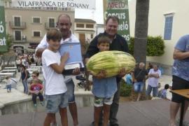 Super-Melone schlägt alle Rekorde