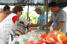 Samstags ist Markttag in Colònia de Sant Pere auf Mallorca, das ganze Jahr über.