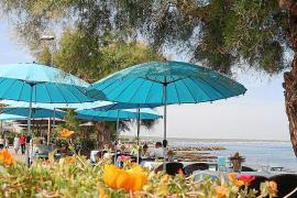 Ruhe und Naturgenuss: Auch am Paseo Marítimo von Colònia de Sant Pere auf Mallorca geht es gemütlich zu.