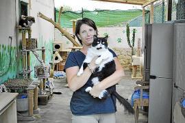 Geliebt und gefürchtet:  Melanie Beckmann fängt in ihrer Freizeit viele Katzen.