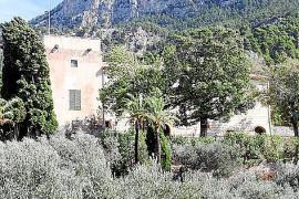 Versteckt zwischen Olivenhainen liegt das ehemalige Kloster Miramar