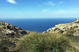 Vom Hochplateau der Tramuntana aus betrachtet, zeigt sich Mallorca von seiner schönsten Seite