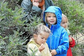 kindergarden escuela en el bosque buñola bunyola bosque escuela ses