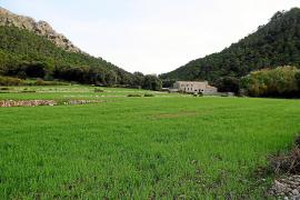 """""""Casas de Binifaldó"""" auf Mallorca ist ein """"Refugio"""" im Stile einer Jugendherberge. Betten, Essen, Wasser und Strom sind hier ink"""