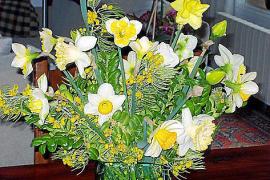 Vase mit verschiedenen Osterglocken und Narzissen.