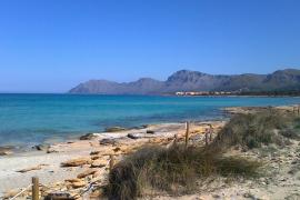 Proteste gegen Strandbar-Projekt in Son Serra de Marina