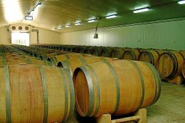 Exportschlager: Mallorcas Wein erobert Deutschland