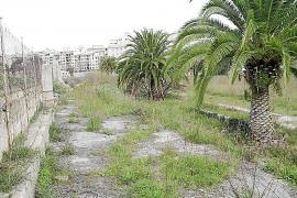 Die ehemalige Hunderennbahn in Jahre 2012, damals noch mit einigen Palmen am Rand.