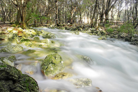 Touristenattraktion: die Quelle Fonts Ufanes auf Mallorca. Die Balearen-Regierung kaufte die Finca, auf der sie sprudelt, die EU