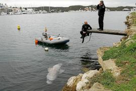 Zwei-Meter-Hai bei Menorca geborgen
