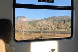 Aus dem Zug kann man Mandel- und Olivenbäume sehen.