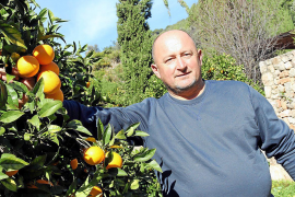 MM-Besuch bei einem Orangenbauern in Sóller