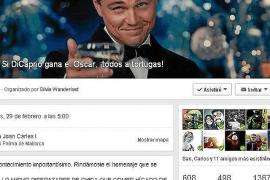 Fans von Leonardo DiCaprio wollen zu den Schildkröten