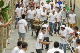 PSOE in Fornalutx gegen Stierkampfverbot