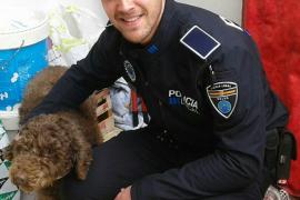 Polizist rettet Hund von Dach