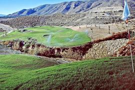 Umweltministerium nimmt Golfplätze unter die Lupe