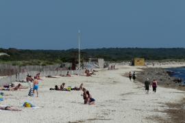 Der Karibikstrand Mallorcas, Es Trenc, soll Naturpark werden