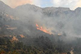 Waldbrand in Cala Tuent unter Kontrolle