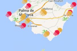 Laut der Quallen-App Grumering sind noch mehr Glibberviecher rund um die Insel unterwegs
