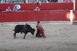 Beim letzten Stierkampf auf Mallorca.
