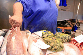 Der Fischhändler in der Markthalle von Santa Catalina auf Mallorca verkauft die Seebrasse für 36 Euro pro Kilo.