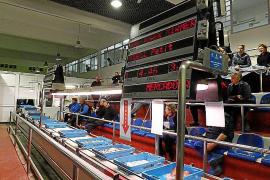 Der Pfeil markiert die Fischkiste, die gerade versteigert wird, die Anzeigetafel informiert über den Preis