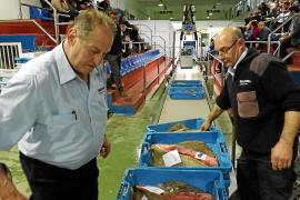 So wird Fisch auf Mallorca versteigert