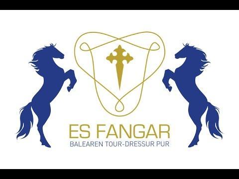 Fünf Sterne für die Finca Es Fangar auf Mallorca