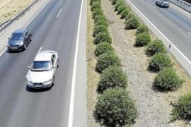 Mallorcas Flughafenautobahn wird saniert