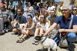 An der Demonstration nahmen auch Hundehalter teil, deren Tiere an den Giftködern starben