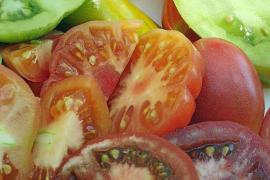 Farbenfrohe Paradiesäpfel mit Mallorca-Aroma