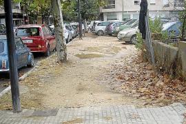 Palmas Bürger beschweren sich zunehmend per Whatsapp
