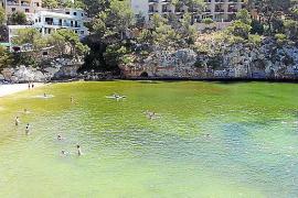 Cala Santanyí komplett in Grün gefärbt