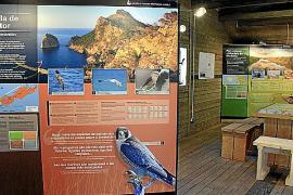 Im Informationszentrum stehen Schautafeln mit ausführlichen Erklärungen zu Flora und Fauna.