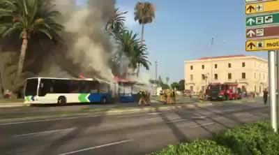 Linienbus der EMT brennt in Palma komplett aus