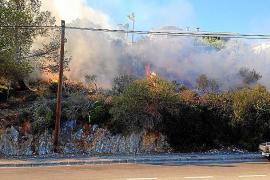 Grünfläche bei Alcúdia stand in Flammen