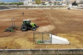 Neuer Rasen für das Nou-Camp-Stadion