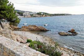 Der Strand Son Punta Marroig in Palmanova steht auch Hunden offen