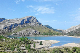 Wasser ist in diesem Jahr ein knappes Gut auf Mallorca