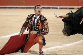 Der letzte Stierkampf in Palma?