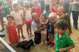 Tomeu Torres hat seit 25 Jahren Schwein