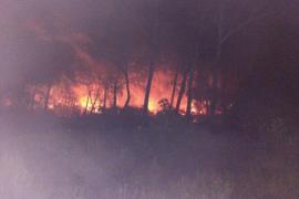 Waldbrand wütete bei Sa Canova